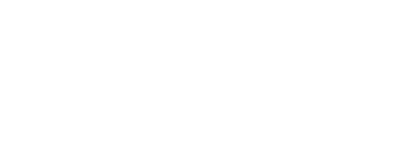 Drone_Addicts_logo_wit